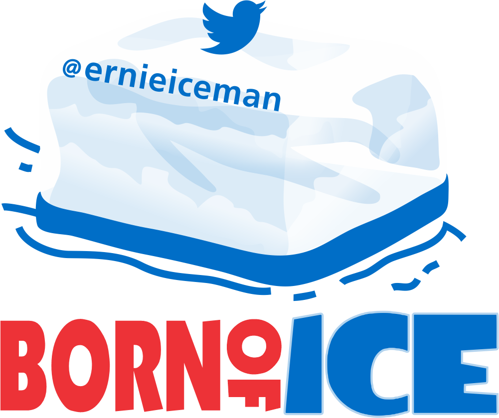 Thumbnail of: 3.5 inch by 3.5 inch #BornOfIce decals